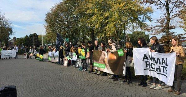 Protest tegen (hobby)jacht in Hoeksche Waard