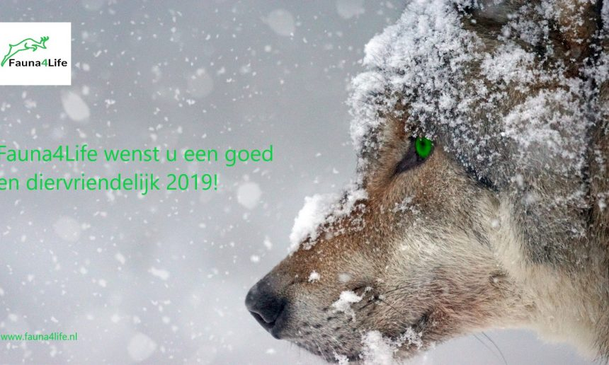 Prettige feestdagen en bedenk … rustende jagers jagen niet